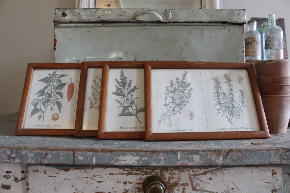 Vier oude houten lijstjes met dubbele kruidenprent