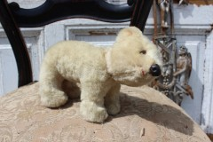 Oude ijsbeer bewegend hoofd